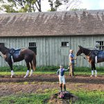 Yaddo Stakes 2018